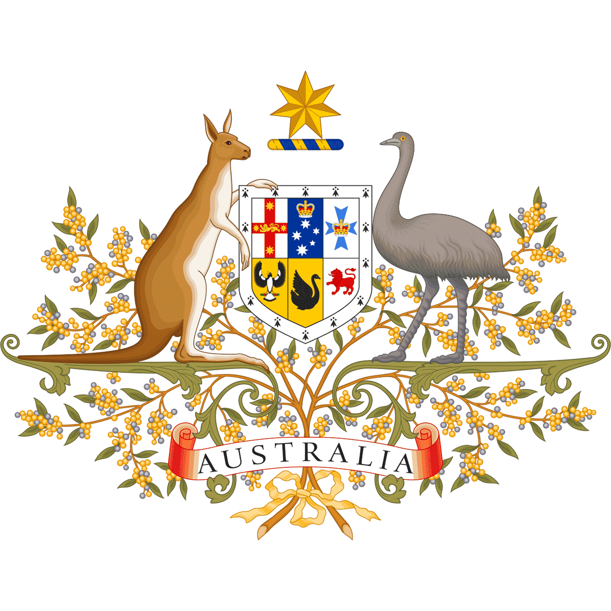 Ambasada Australii, wiza do Australii
