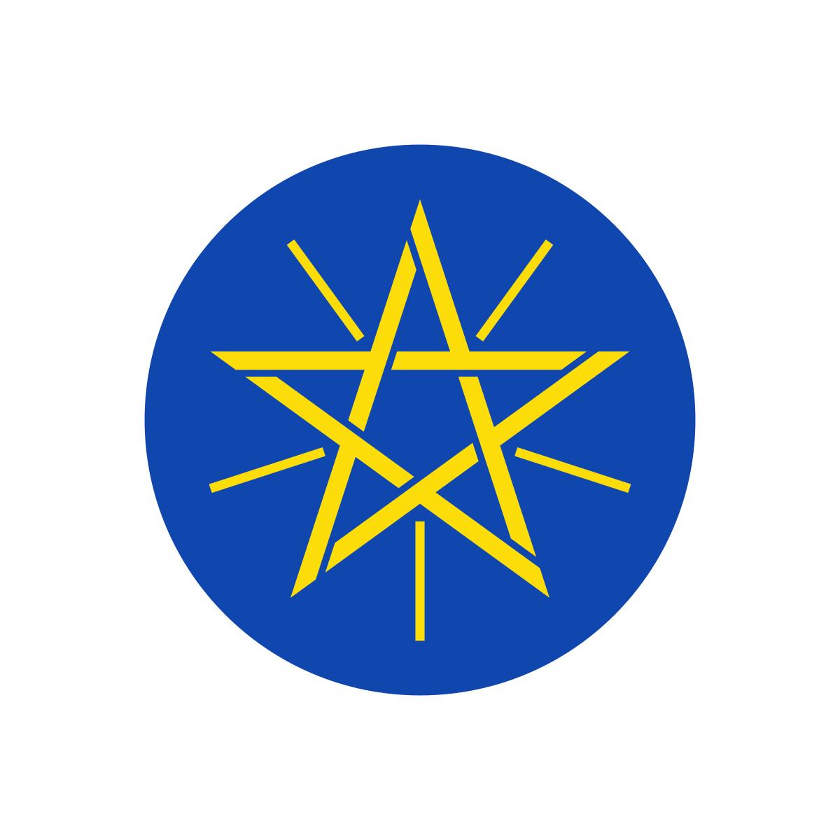 Ambasada Etiopii, Wiza do Etiopii