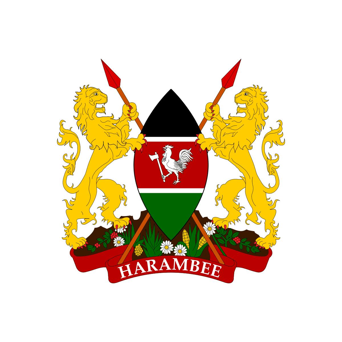 Ambasada Kenii. Wiza do Kenii.