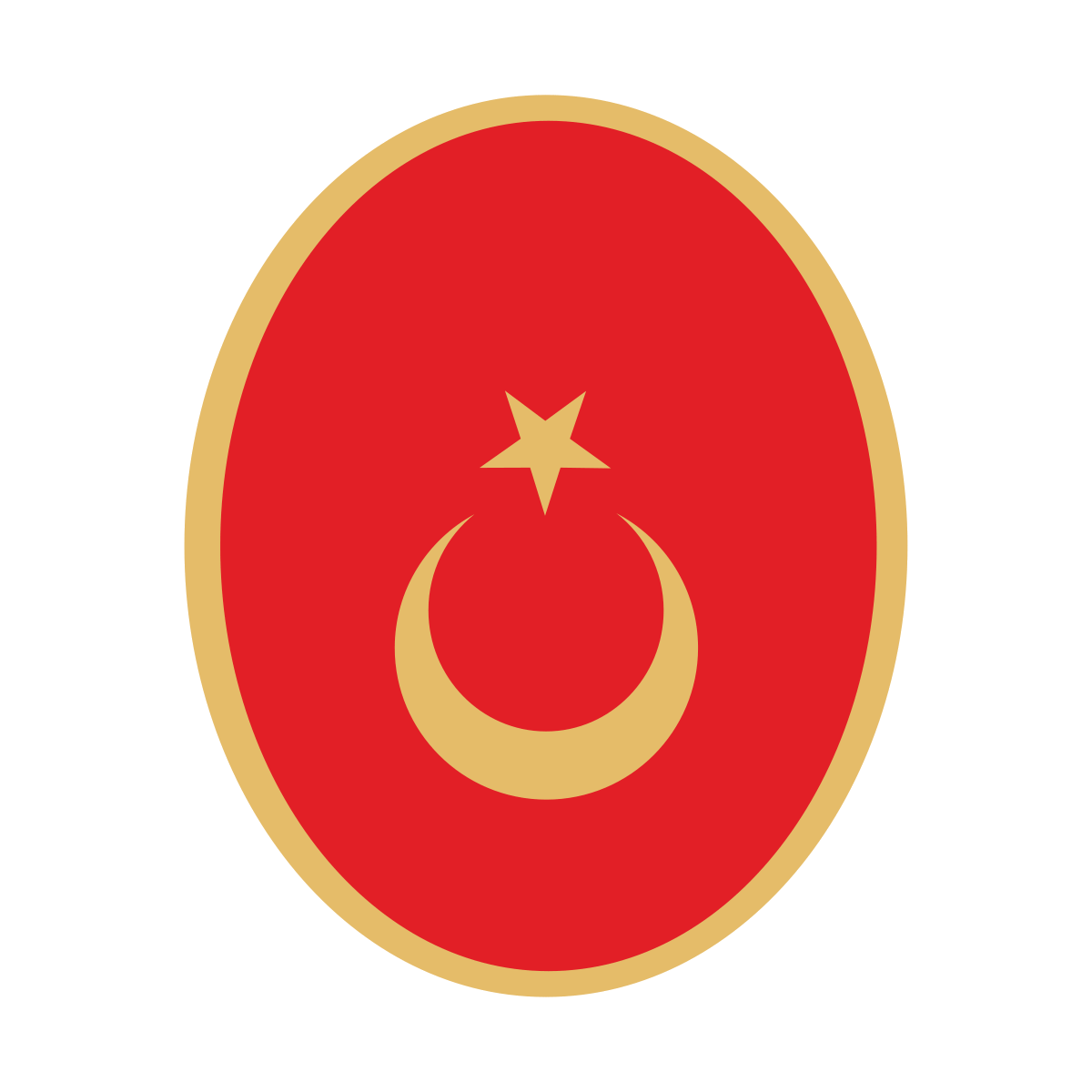Ambasada Turcji